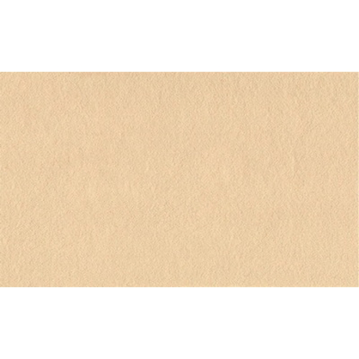 Фетр листовой жесткий 3мм 20х30см арт.КЛ.26975 100% ПЭ уп.2 шт цв.песочный