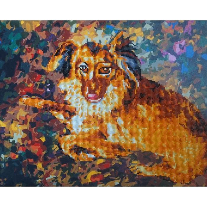 Набор Колор Кит алмазная картина-раскраска арт.КК.RA004 Породистый пес 40х50