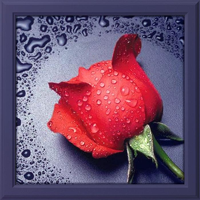 Набор для изготовления картин АЛМАЗНАЯ ЖИВОПИСЬ арт.АЖ.014 Красная роза 22х24 см
