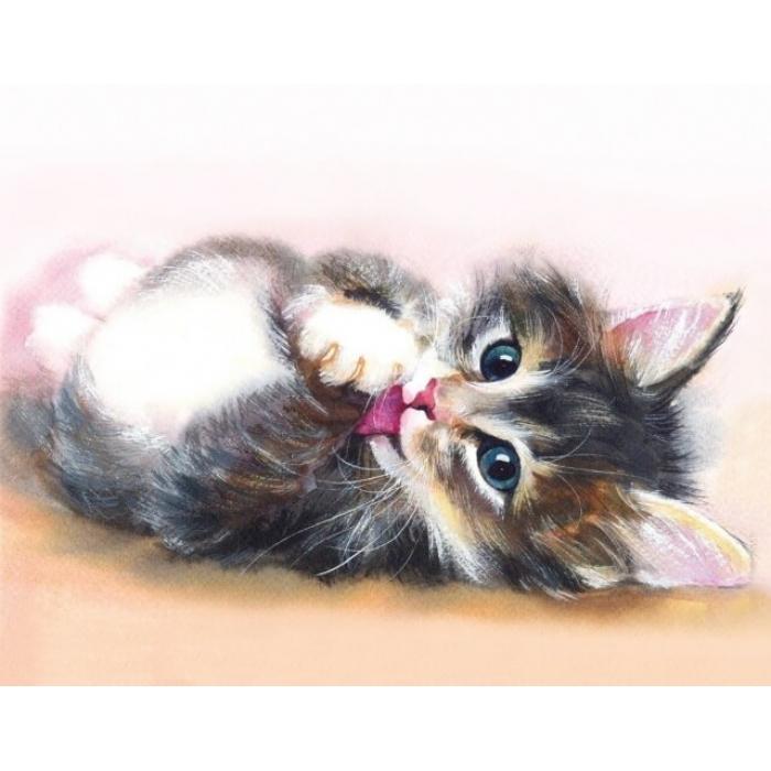Алмазная вышивка Милый котенок LG011 40х50 тм Цветной