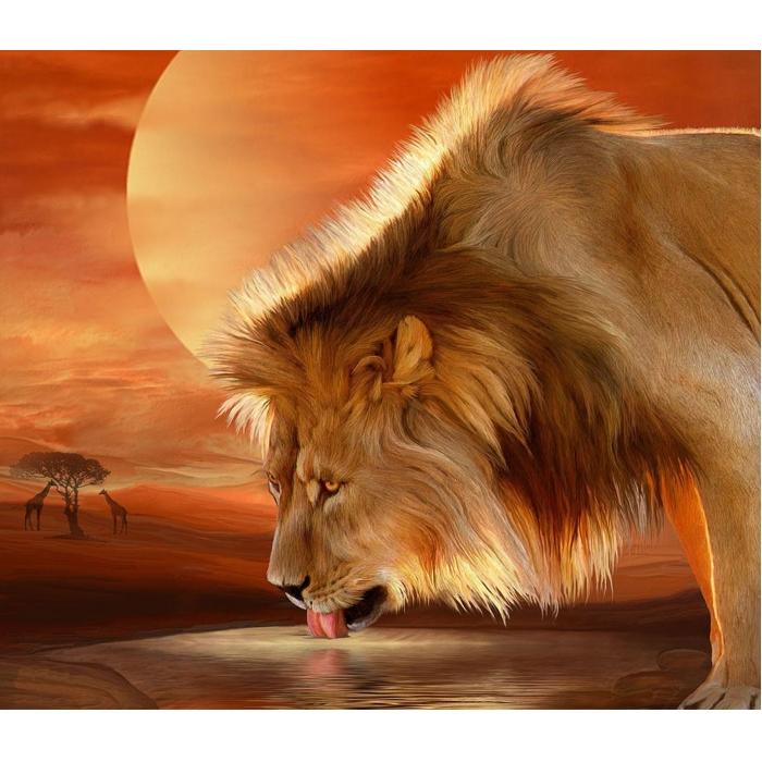 Картина 3D мозаика с нанесенной рамкой Molly арт.KM0906 Лев на водопое 40х50 см