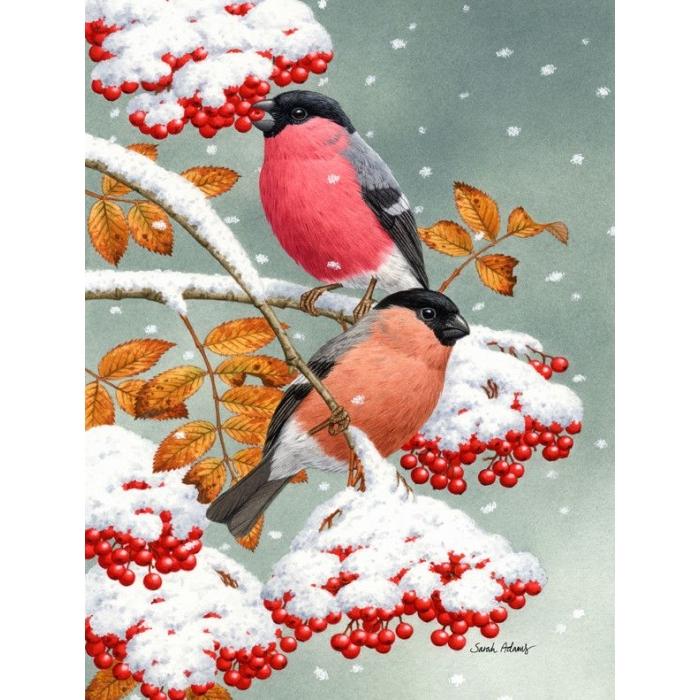 Алмазная мозаика Ah51151 Снегири и первый снег 40х50
