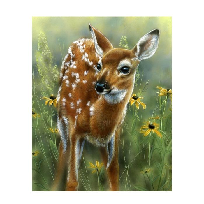 Картина по номерам с цветной схемой на холсте Molly арт.KK0601 Олененок (22 цвет) 30х40 см