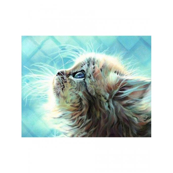 Картина по номерам с цветной схемой на холсте Molly арт.KK0675 Пушистый котенок 30х40 см