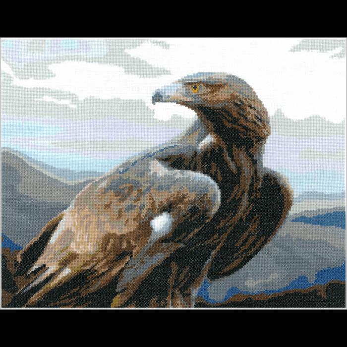 Набор для вышивания мулине НИТЕКС арт.0038 Свобода 46х37,5 см