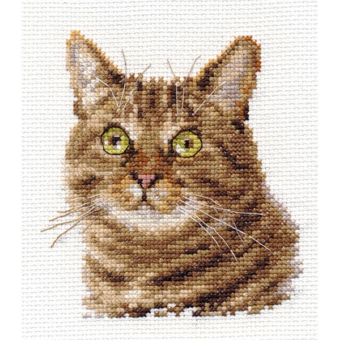 Набор для вышивания АЛИСА арт.0-135 Европейский кот 11х12 см