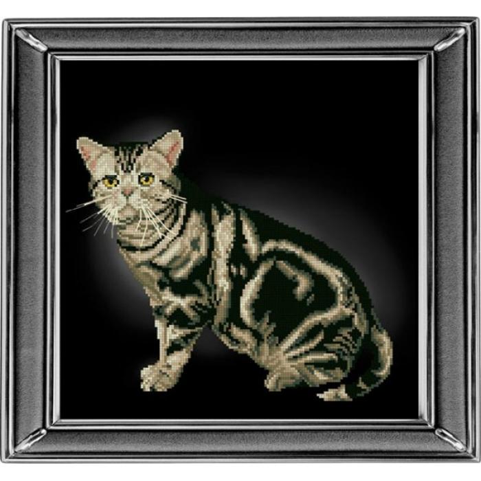 Набор для вышивания мулине КРАСА И ТВОРЧЕСТВО арт.20912 Американская короткошерстная кошка 28х28 см