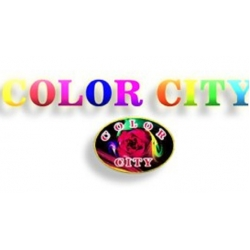 Color City