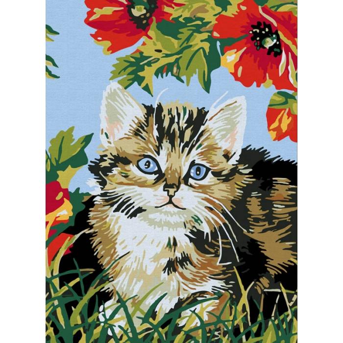 Картины по номерам Белоснежка арт.БЛ.009-CE Котенок в цветах 30х40 см