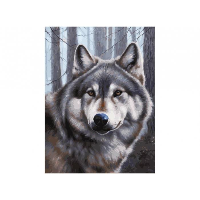 Живопись на картоне Белоснежка арт.БЛ.3090-CS Волк 30х40 см
